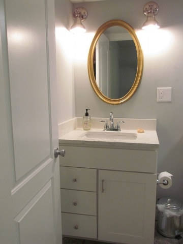Masculine Transitional Finished Basement bathroom vanity