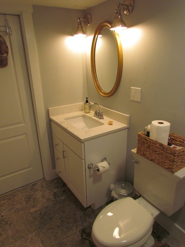Masculine Transitional Finished Basement bathroom