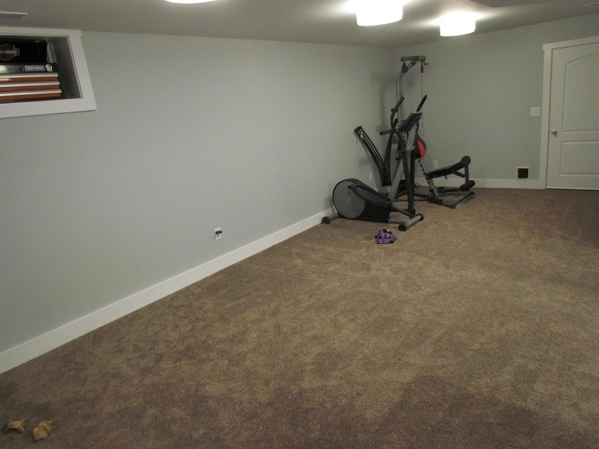Masculine Transitional Finished Basement exercise area