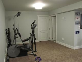 Masculine Transitional Finished Basement exercise equipment