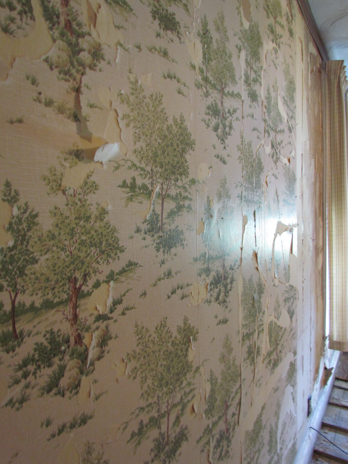 Historic Renovation Before And After wallpaper before