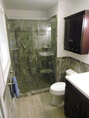 Bathroom Renovation shower and cabinet