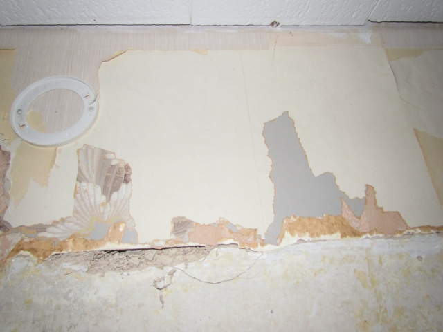 Historic Renovation Before And After wall before